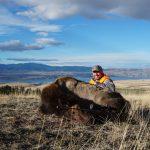 First Montana Elk by David Hewett